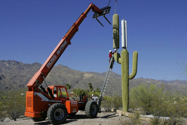 cell phone tower disguised as a cactus